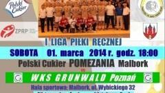 POLSKI CUKIER CZEKA NA GRUNWALD. POMEZANIA MALBORK - WKS GRUNWALD POZNAŃ - 01.03.2014