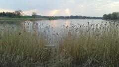 Znaleziono zwłoki w jeziorze sztumskim... Kim jest martwy mężczyzna?