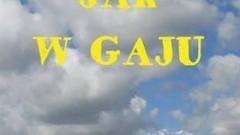 Nowy Dwór Gdański : Zobacz majowe propozycje Kina Żuławy i Żuławskiego Ośrodka Kultury