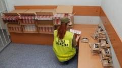 80 tysięcy papierosów i 10 kg tytoniu warte 62 tysiące zł przechwycone przez Straż Graniczną