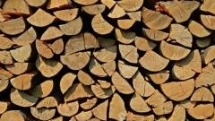 Centralne ogrzewanie na węgiel i drewno - czy to ma sens?
