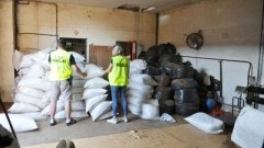 Krajanka oraz susz tytoniowy warte blisko 2 mln zł zabezpieczone przez Straż Graniczną.