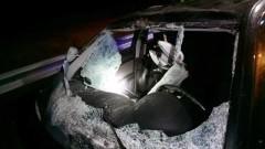 Kiezmark: Zderzenie pięciu aut na krajowej 7. Łosie śmiertelnym zagrożeniem.