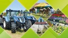 Stare Pole: XXVI Żuławskie Targi Rolne oraz XX Regionalna Wystawa Zwierząt Hodowlanych