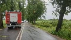 Powiat sztumski: Powalone drzewa, uszkodzone dachy i nie tylko. 72 interwencje straży pożarnej w wyniku gwałtownej burzy.