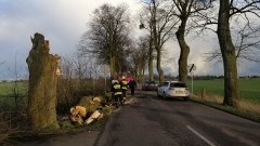 Strażacy walczyli ze skutkami silnego wiatru w naszym regionie.