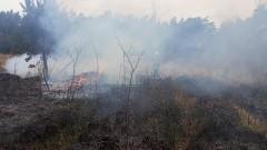 Nadleśnictwo Elbląg apeluje - bądźmy ostrożni i odpowiedzialni podczas spacerów po lesie.