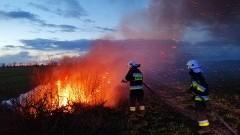 Przestańcie podpalać trawę! Świąteczne interwencje strażaków z powiatu malborskiego.