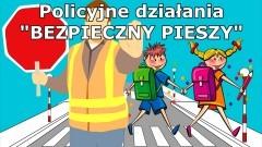 """Malbork. W piątek policyjne działania """"Bezpieczny pieszy""""."""