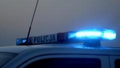Nowy Dwór Gdański. Poszukiwany był za kradzieże i czynną napaść na policjanta.