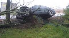 Kierowca Audi stracił panowanie nad pojazdem i uderzył w drzewo. Weekendowy raport służb mundurowych – 19.10.2015