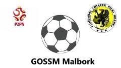 Dwa zwycięskie spotkania dla GOSSM Malbork pomiędzy GOSSM Elbląg - 15.10.2015