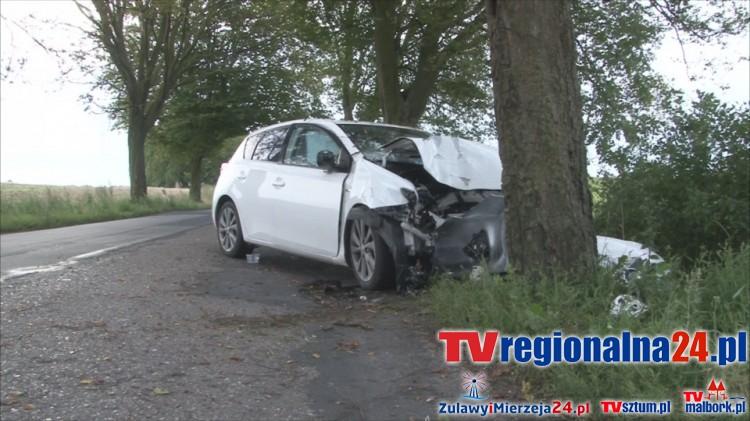 Toyota uderzyła w drzewo w Poliksach. 41-latka z obrażeniami ciała zabrana do szpitala - 10.08.2016