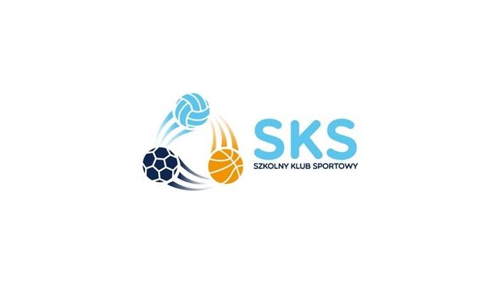 Podsumowanie programu Szkolny Klub Sportowy – tworzymy SKS-ową społeczność! - 03.01.2018