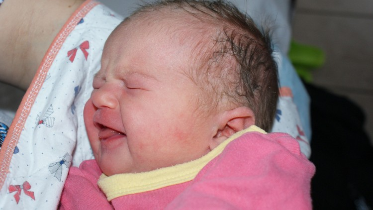 Jestem Zuzia, urodziłam się w Malborku.