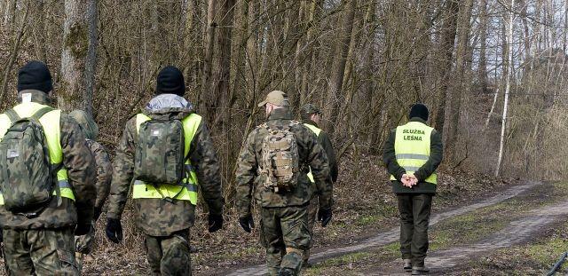 Żołnierze WOT oraz Nadleśnictwo Elbląg prowadzili poszukiwania dzików chorych na afrykański pomór świń.