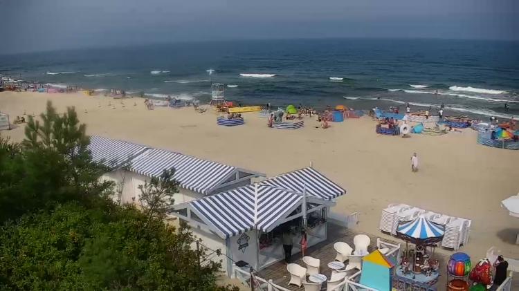 Wakacyjny autobus z Malborka do Krynicy Morskiej.