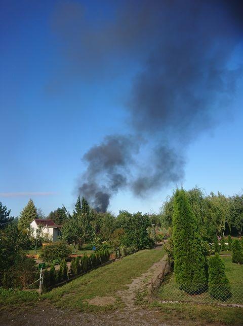 Pożar altanki na Zatorzu w Malborku