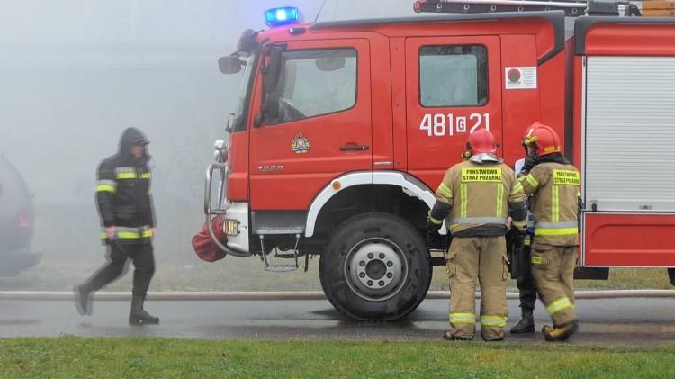 Kot w kanale Juranda i pożar Opla - weekendowy raport malborskich służb mundurowych.