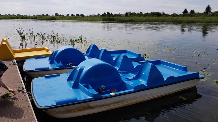 Za ile rower wodny w Malborku?