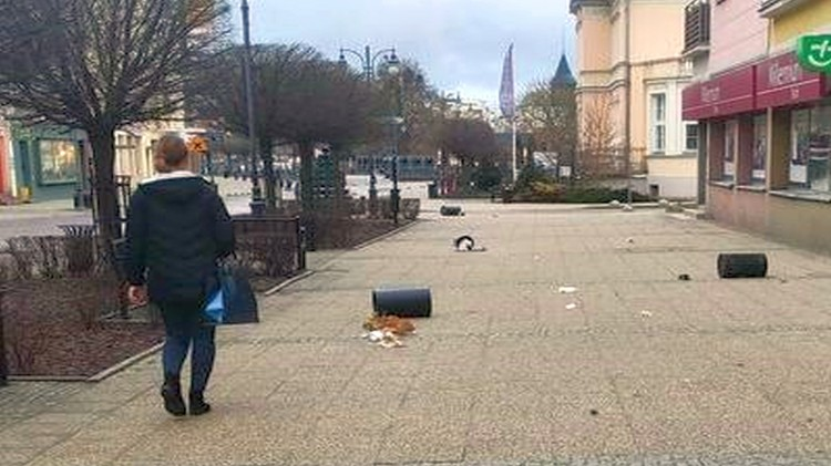 Regulamin utrzymania czystości i porządku na terenie miasta Malborka
