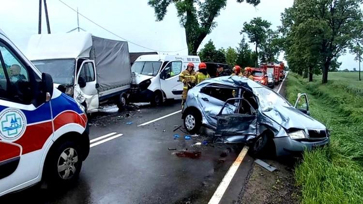 Dwie osoby zginęły w wypadku drogowym w Dębinie – weekendowy raport malborskich służb mundurowych.