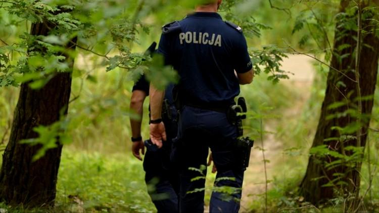 Wybierasz się na grzyby? Policja ostrzega i apeluje o rozsądek.