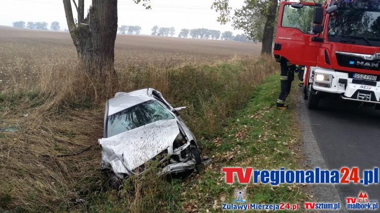 Polaszki. Jedna osoba poszkodowana po zderzeniu opla astry z drzewem – 14.10.2015