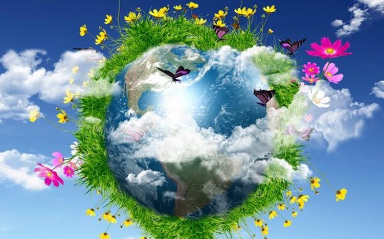 Wiersze O Ochronie Ziemi Szkolne Blogi