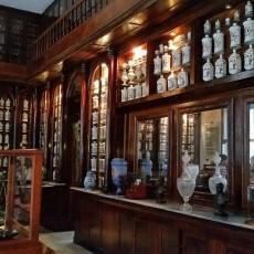 Technik Farmaceutyczny, Magister Farmacji, Technik farmaceutyczny na staż